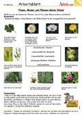Pflanzen - Blätter, Blumen, Natur   Aduis
