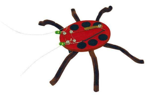 Spinne Luminarx Marienkäfer Scaraba